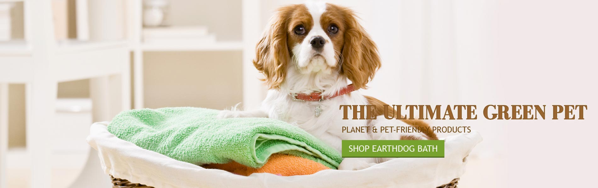 The Ultimate Green Pet - Planet and Pet-Friendly Products