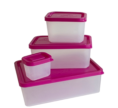 Bento Lunch Box Set of 4 Containers in Raspberry
