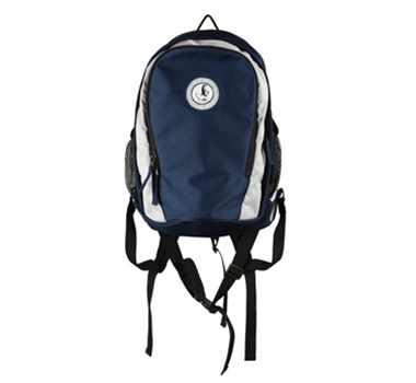 Engage Green Recycled PET Backpack in Blue/Silver