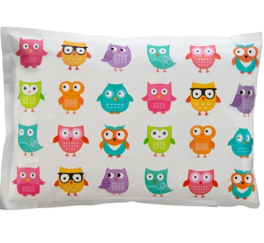 Obentec Laptop Lunches Biodegradable Non-toxic Bento Cool Ice Pack - Owls