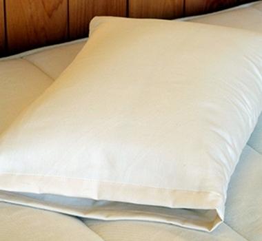 Holy Lamb Organics Cotton & Eco-wool Child Snuggle Pillow