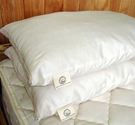 "Organic Cotton & Eco-Wool ""Down"" Pillows"