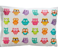 Biodegradable Non-Toxic Bento Cool Ice Pack - Owls