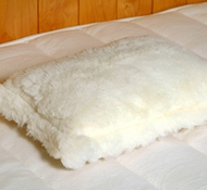 Holy Lamb Eco-Wool Fleece Toddler Pillow