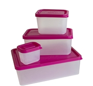 Lunch Box Set of 4 Containers - Raspberry