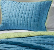 Organic Cotton X Marks the Spot Twin Quilt in Surf Blue/Apple