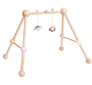 Plan Toys Eco-Friendly Play Gym