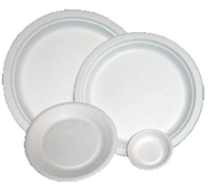 Biodegradable Compostable Bagasse Plates by EPS