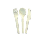 Biodegradable Compostable Utensils by Eco-Products
