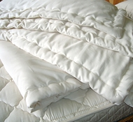 Holy Lamb Eco-Wool & Organic Cotton Comforter in Cool Comfort