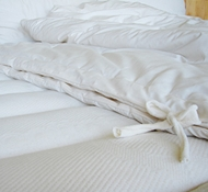Holy Lamb All-Season Organic Cotton & Eco-Wool Comforter